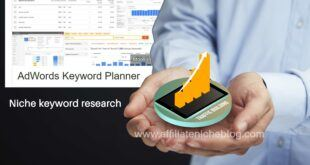Niche keyword research - Google AdWords Keyword Planner